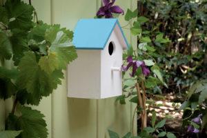 une petite cabane à oiseaux est accrochée au mur extérieur d'une maison grâce à des languettes Command de 3M. Une vigne vierge court le long du mur. La maisonnette ets blache avecun toit bleue.